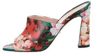 Gucci Shanghai Blooms Sandals