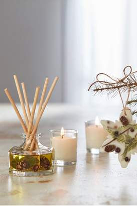 Soft Surroundings Rosy Rings White Birch & Tonka Petite Botanical Diffuser