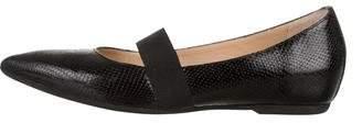 Anyi Lu Leather Pointed-Toe Flats