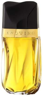 Estee Lauder Knowing Eau De Parfum Spray 30ml - Nude