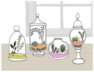 Dacor Sloe Gin Fizz Terrariums Print