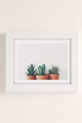 Cassia Beck Potted Plants Art Print