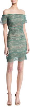 Style Stalker Stylestalker Alexander Off-the-Shoulder Crochet Lace Mini Dress