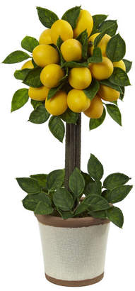 Nearly Natural Lemon Ball Round Topiary Arrangement in Decorative Pot