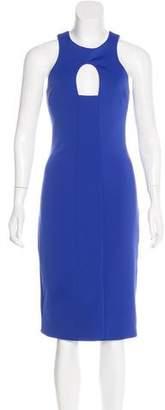 Cushnie et Ochs Silk Bodycon Dress