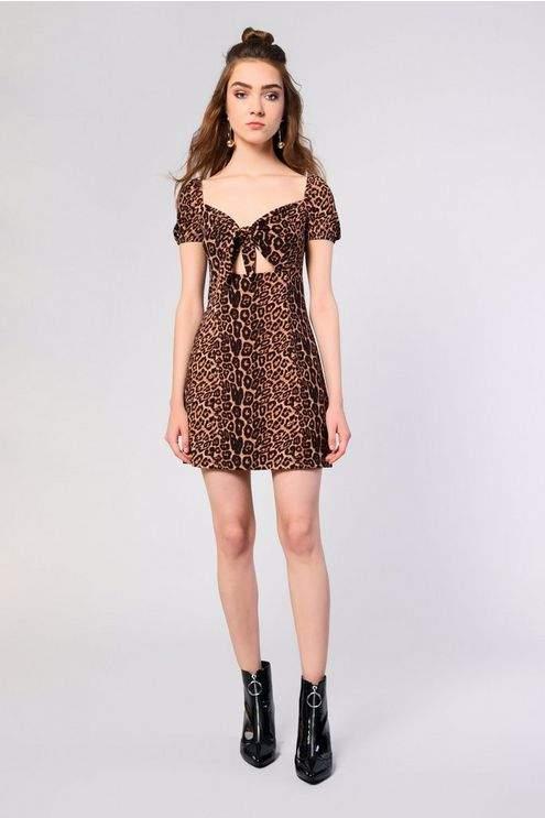 **Animal Printed Skater Dress by Glamorous Petite