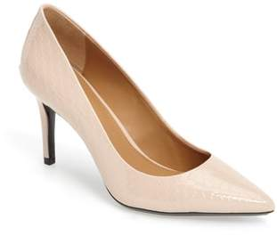 Women's Calvin Klein 'Gayle' Pointy Toe Pump