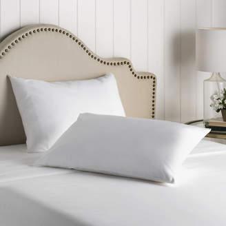Wayfair Basics Wayfair Basics Washable Zippered Pillow Protector