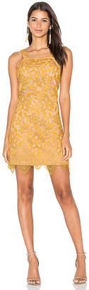 WAYF Orleans Lace Mini Dress in Yellow $98 thestylecure.com