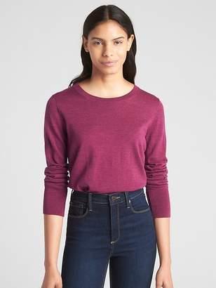 Gap Pullover Crewneck Sweater in Merino Wool