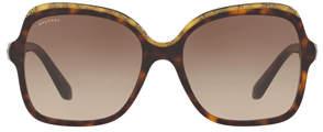Bvlgari BV8181B Sunglasses