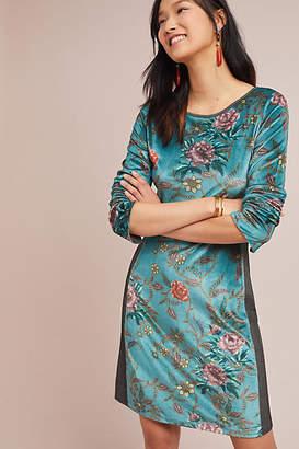 Aldomartins Floral Velvet Dress