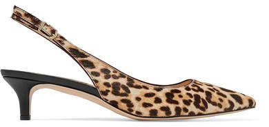 Sam Edelman - Ludlow Leopard-print Calf Hair Pumps - Sand