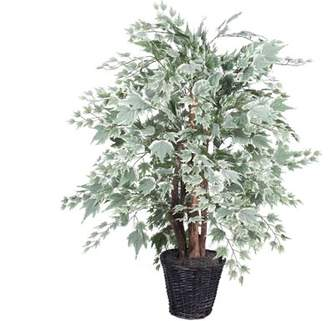 Vickerman 4' Artificial Silver Maple Extra Full in a Rattan Basket