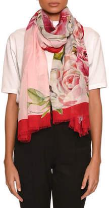 Dolce & Gabbana Rose-Print Scarf