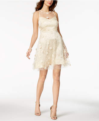 Taylor Embellished Lace A-Line Dress