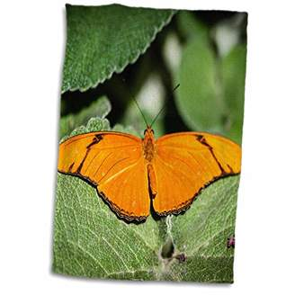 """3D Rose A Colorful Heliconian Dryas Julia Butterfly. TWL_200219_1 Towel 15"""" x 22"""""""