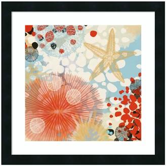 Amanti Art Exotic Sea Life II Framed Wall Art