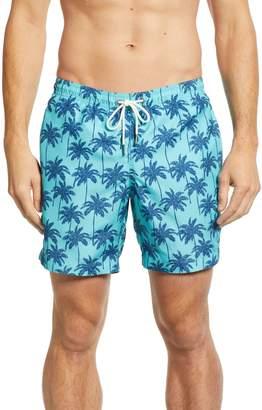 Trunks boto Cabo Palm Trees 6.5 Inch Swim
