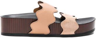 Chloé Leather & Suede Lauren Sandals