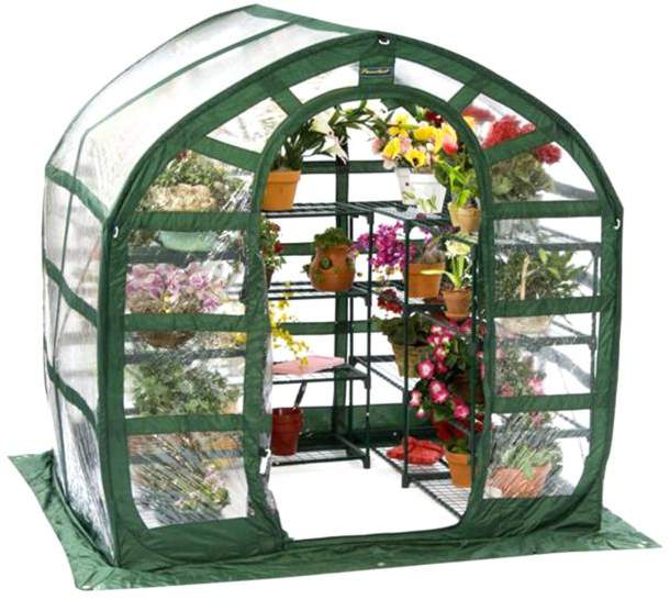 FlowerHouse SpringHouse 6' x 6' PVC Pop-Up Greenhouse