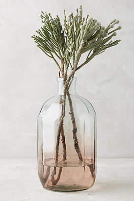 Anthropologie Gradient Vase