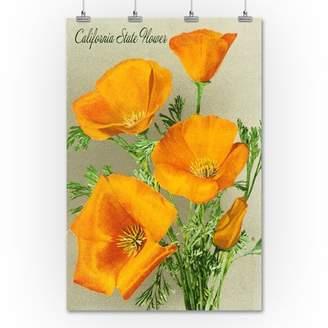 California State Flower - The Californian - Poppy Flowers - Lantern Press Artwork (36x54 Giclee Gallery Print, Wall Decor Travel Poster)