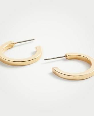 Ann Taylor Wide Hoop Earrings