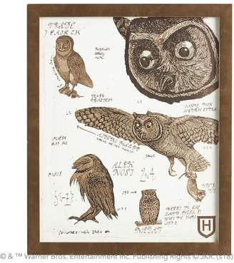 Pottery Barn Teen HARRY POTTER Owl Framed Art, 13&quotx16&quot, Gold Frame