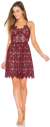 J.O.A. Fit And Flare Lace Dress $95 thestylecure.com