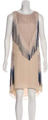 Haute Hippie Fringe-Trimmed Silk Dress