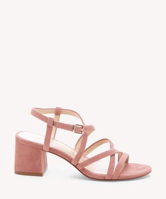 Sole Society Seranah Strappy Block Heel Sandal