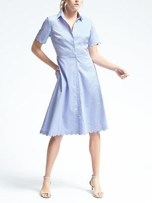 Blue Scallop Shirtdress $98 thestylecure.com