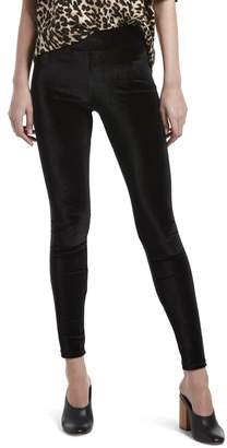 Hue Women's Velvet Leggings, Assorted