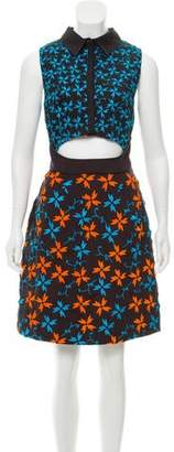 Tanya Taylor Embroidered Dylan Dress