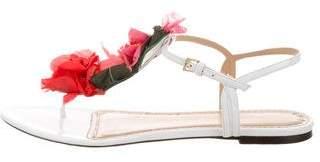 Charlotte Olympia Floral Appliqué Ankle Strap Sandals