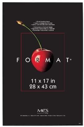MCS 11x17 Inch Format Frame