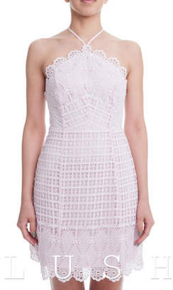Lush Scallop Lace Dress