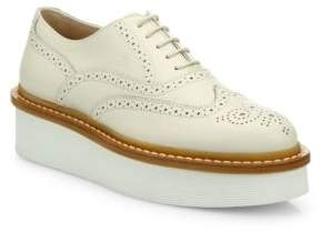 Tod's Brogue Leather Creeper Oxfords