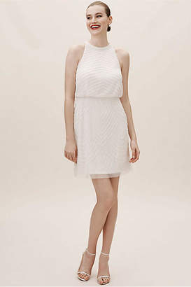 Adrianna Papell Ludgate Wedding Guest Dress