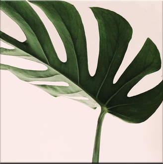 Photographers Lane Large Single Tropical Leaf 2 Printed Wall Art