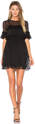 Endless Rose Sheer Shift Dress in Black $75 thestylecure.com