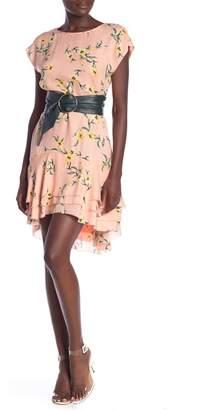Joie Coreen Silk Dress
