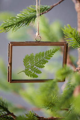 Anthropologie Botanical Frame Ornament, Rectangle