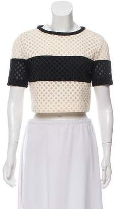 Elizabeth and James Mesh-Accented Crop Top