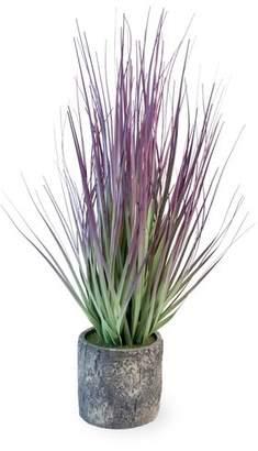Gracie Oaks Desktop Grass in Planter