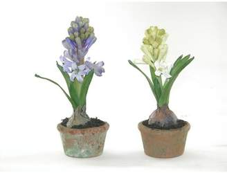 New Growth Designs Faux Hyacinth Flower in Pot