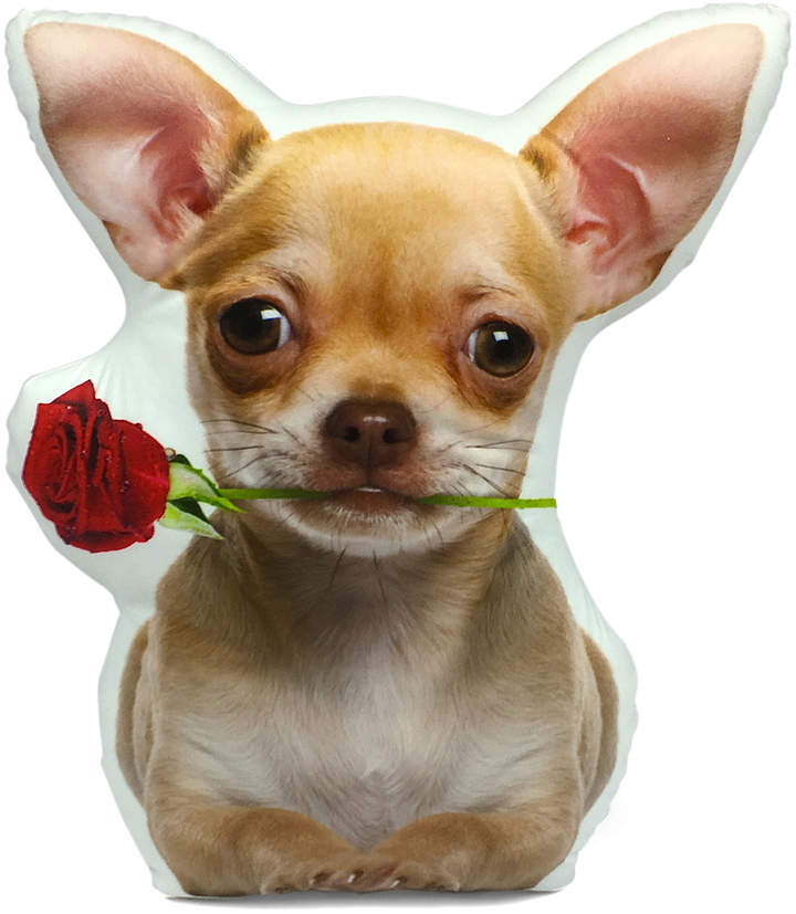 Fawn Chihuahua With Rose Throw Pillow