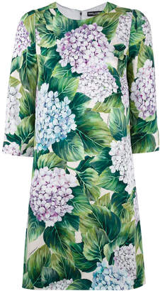 Dolce & Gabbana hydrangea print shift dress