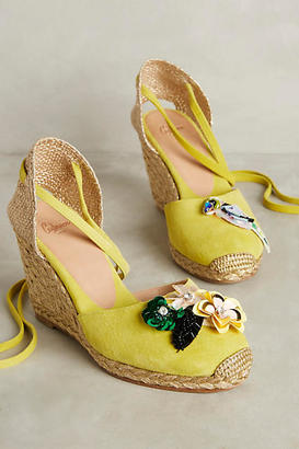 Anthropologie Castaner Carina Citron Wedges $388 thestylecure.com
